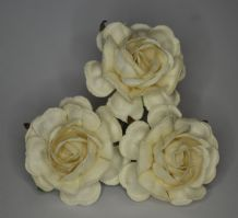 OFF WHITE HYBRID TEA ROSES Mulberry Paper Roses